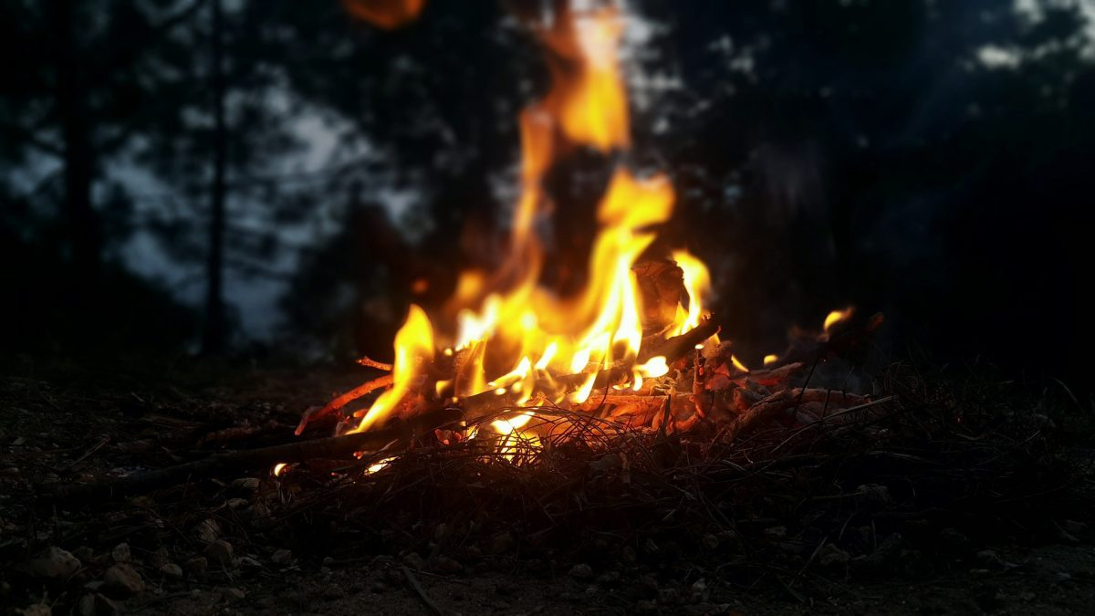 campfire in a woods